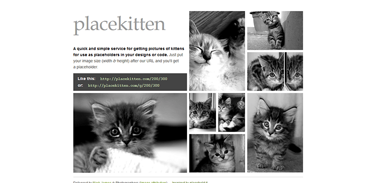 Top-10-Image-Placeholder-Services---placekitten